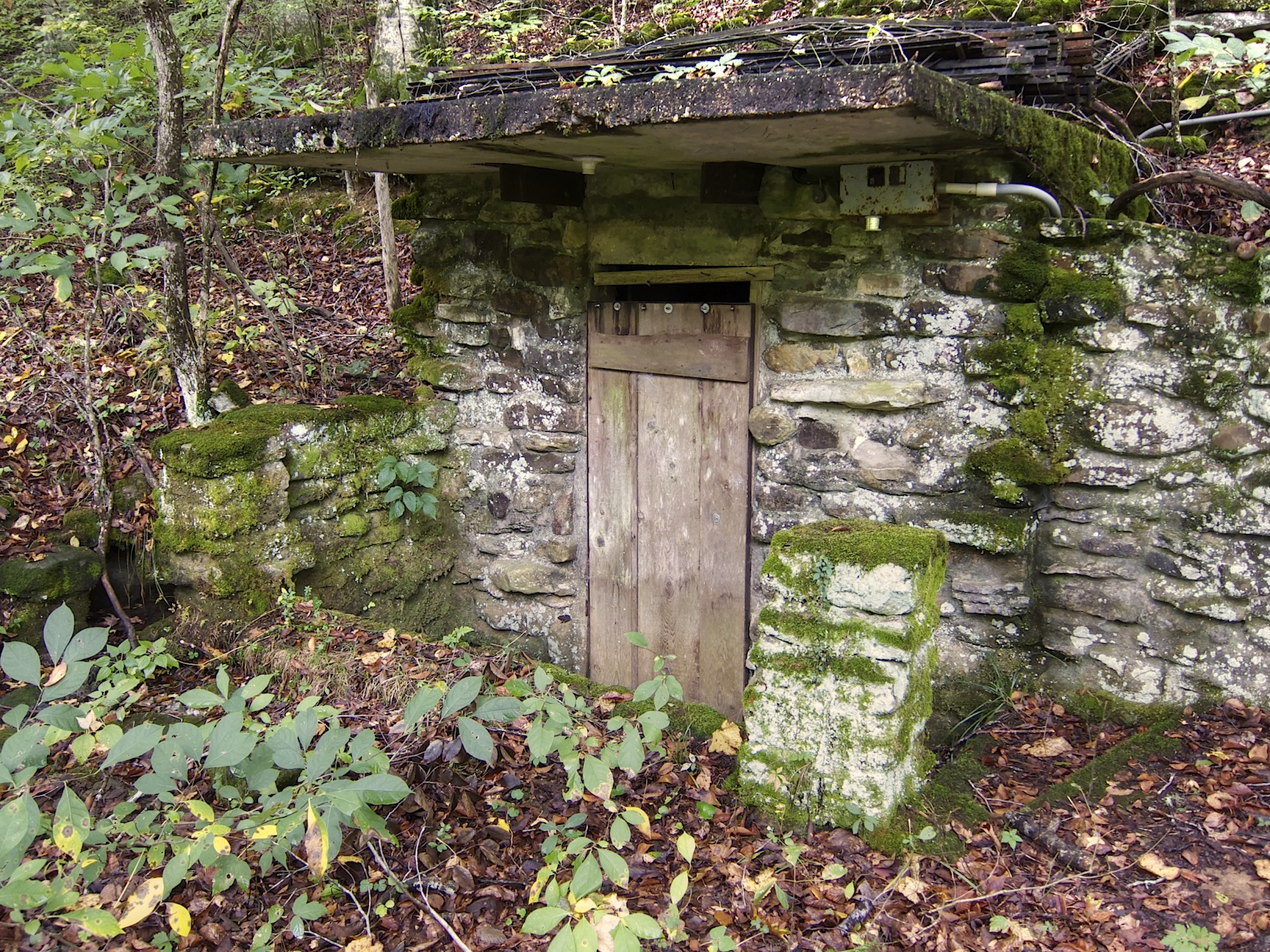 Old spring house on The Little Buffalo River | Life and Wildlife along the Little Buffalo River