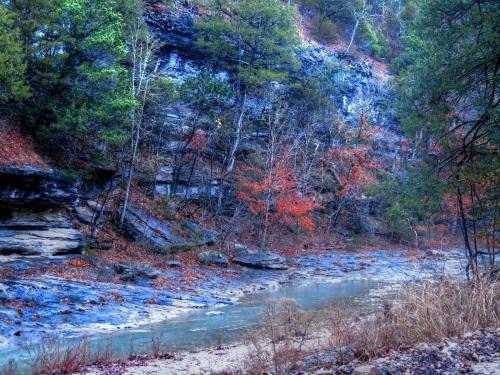 Henson Creek 2/13 8 AM