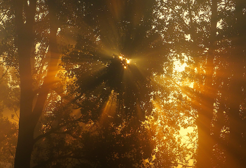 Screen Shot 2013-10-17 at 8.27.21 AM