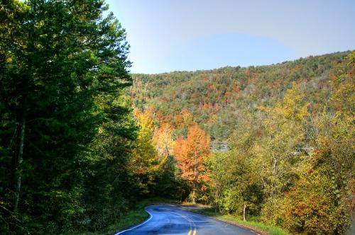 Drive down to Steel Creek